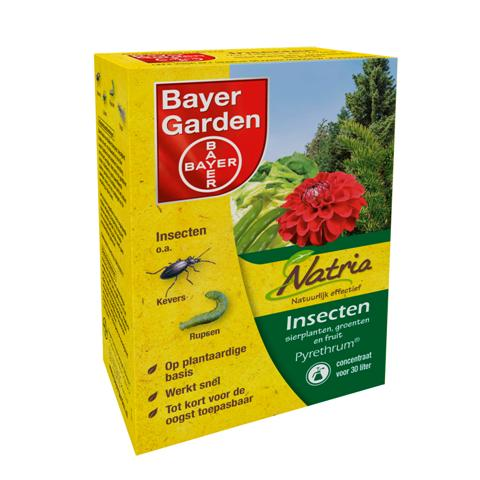Bayer Garden Pyrethrum