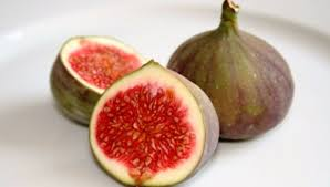 fruits of a fig